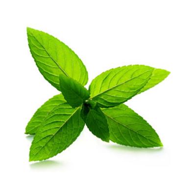 Kula do kąpieli zielona herbata biokosmetyki24.com